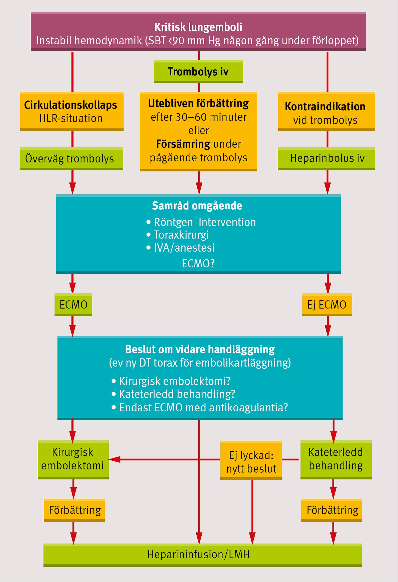 rang et al pharmacology pdf 8th edition